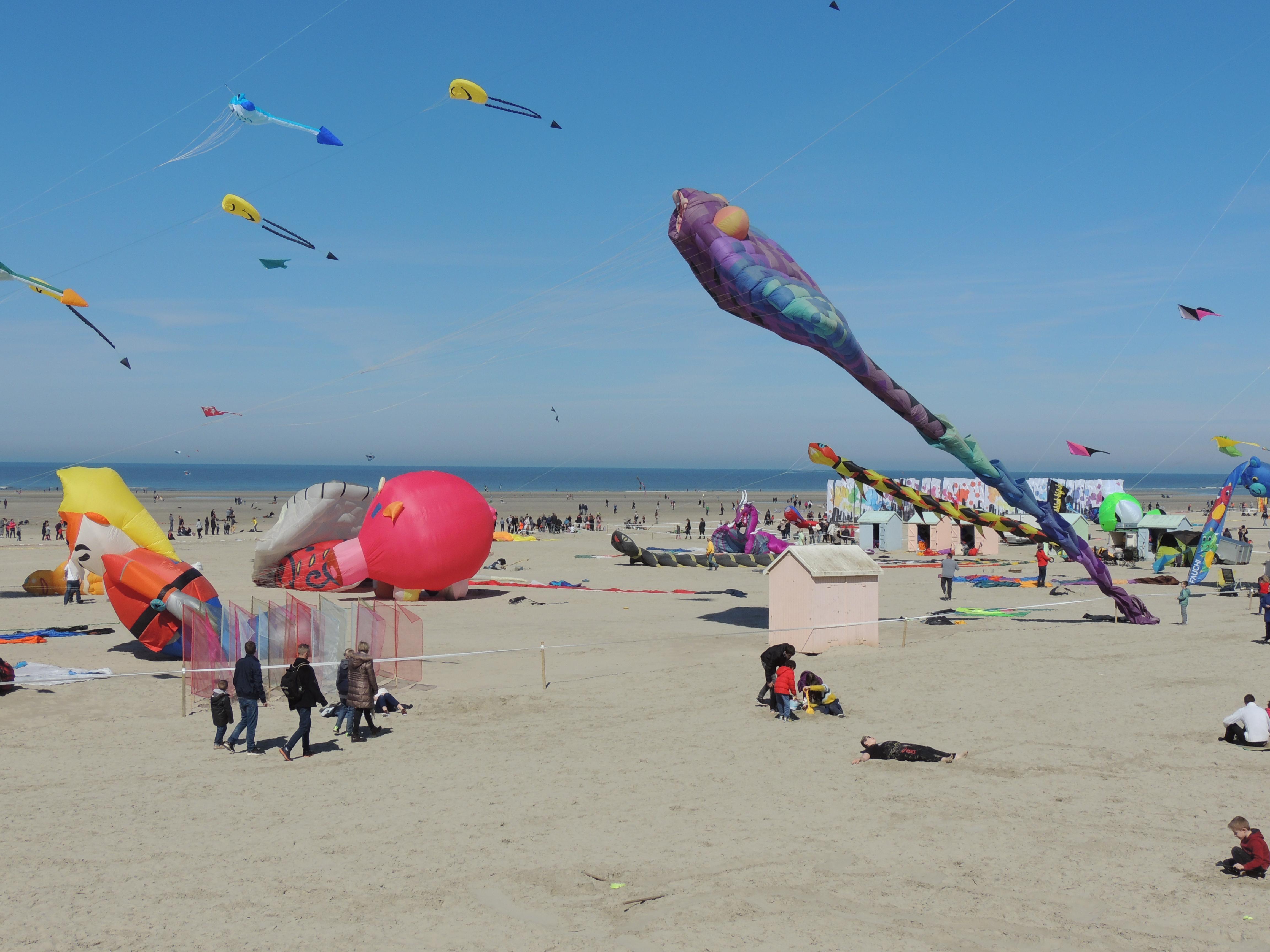 Festival du cerf-volant à Berck plage