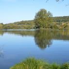 Les zones humides protègent notre eau et notre biodiversité