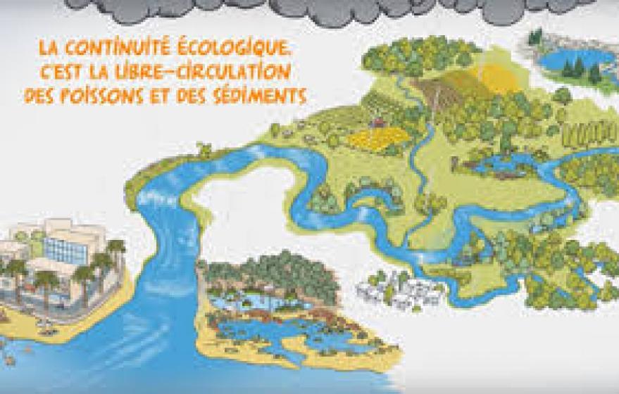 Redonnons libre-cours à nos rivières.jpg