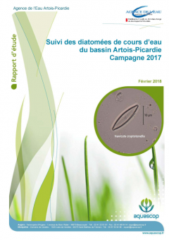 COUV_Rapport_IBD_2017.png