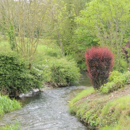 course_dd_14052014_doudeauville_29_0.jpg