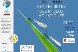 """conférence """"Petites bêtes des milieux aquatiques"""""""