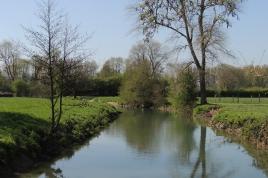 Restauration de la continuité écologique de la Hem au niveau du moulin de Leulenne